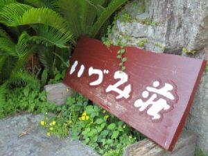 いづみ荘【下田温泉】