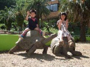 体感型動物園 iZoo (イズー)