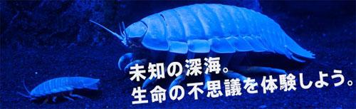 深海水族館2